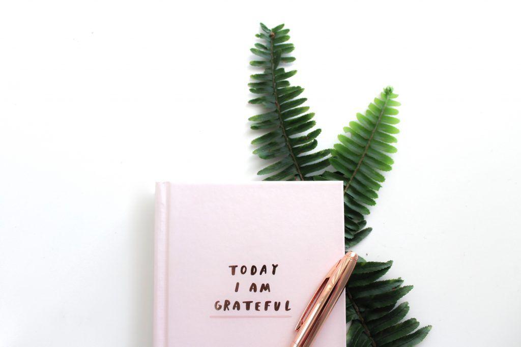 dnevnik zahvalnosti